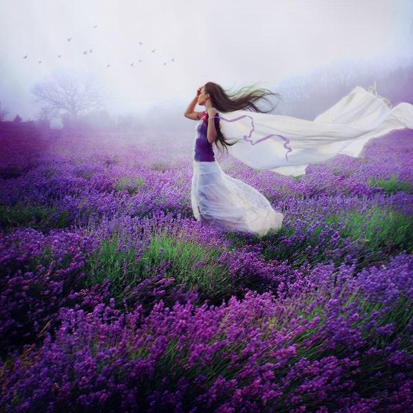 lavender_by_elestrenn-d5rhttf