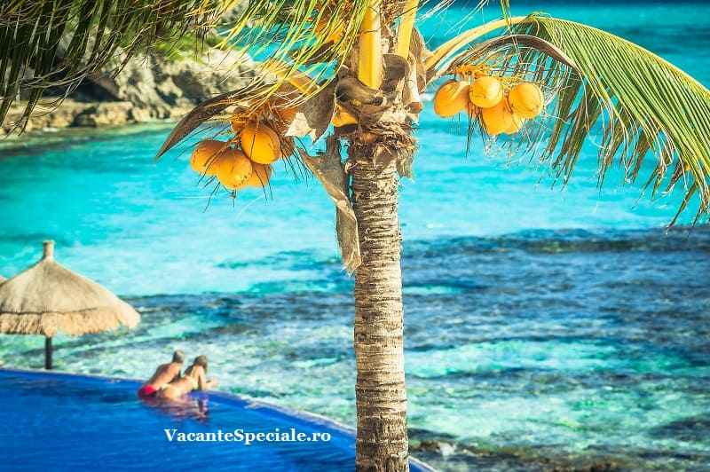 http://www.dreamstime.com/stock-images-couple-relaxing-tropical-island-image29365014