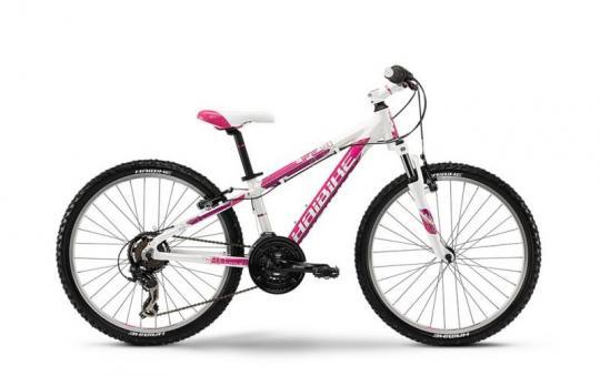bicicleta Haibike